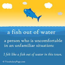 Fish out Water